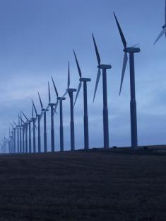 Windmill-Google